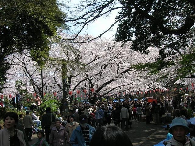 d7-12-ueno-park