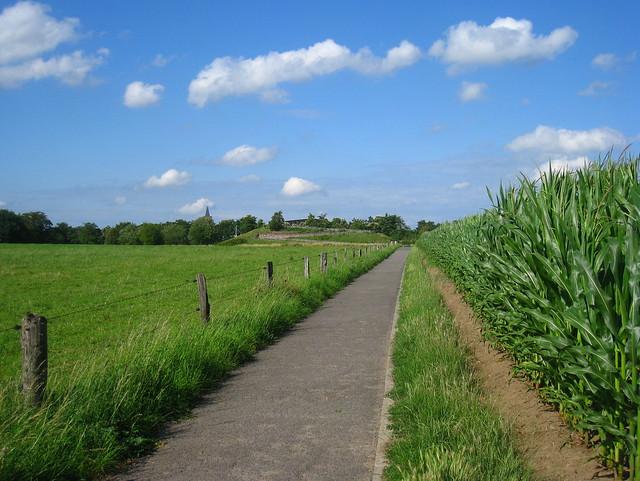 sentiero, Abdij van't Park, Heverlee (Leuven)