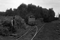 syks - peat moss litter works hatfield moor 68 simplex diesel shunting at works JL (johnmightycat1) Tags: yorkshire railway peat hatfield 3ftgauge