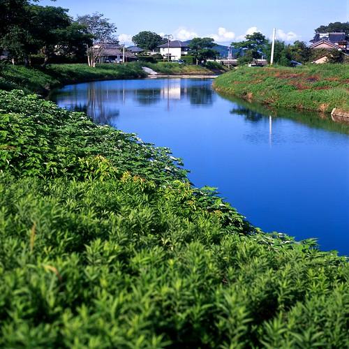 瑞梅寺川(池田川)下流
