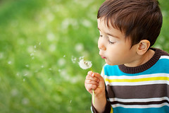 Kid blowing dandelion (irinakostyuk1) Tags: boy summer baby brown flower cute nature beautiful face grass childhood horizontal hair season children fun freedom sweater spring child hand emotion little outdoor weekend candid joy innocent meadow seed free blowing son blow dandelion fantasy single enjoy luck simplicity dreams attractive imagination leisure relaxation offspring activities wishing purity aspirations
