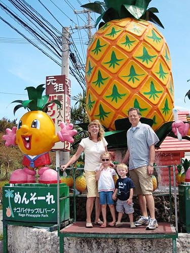 Nago Pineapple Park 2