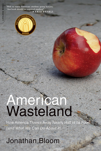 American Wasteland--paper back cover