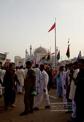 shrine of lal qalandar (Anahita Hashmani) Tags: pakistan tradition malang sufi sindh urs beggers dhol sufisaint malangs qalandar fakirs pakistanheritage sehwanshareef lalshehbazqalandar jhuleylal
