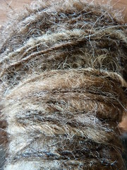 Spinning unwashed fleece