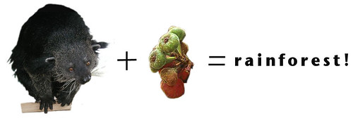 biturong arithmetic