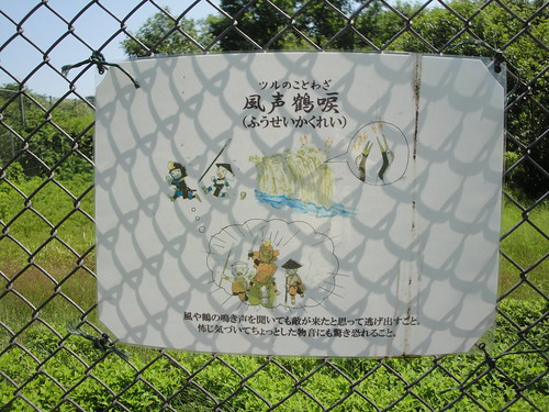 丹頂鶴自然公園