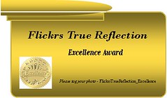Flickrs True Reflection - Excellence Award