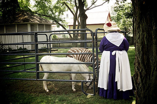 Zoar Ohio Harvest Festival 2011:  The lady and the zebra.
