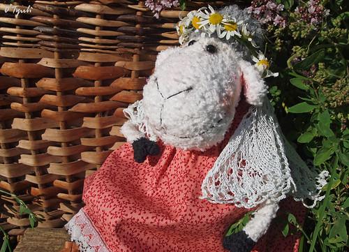 Sheeps11