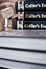 Climbing book cases. [96/365] (raslg) Tags: rg danbo r3g russellgreen raslg