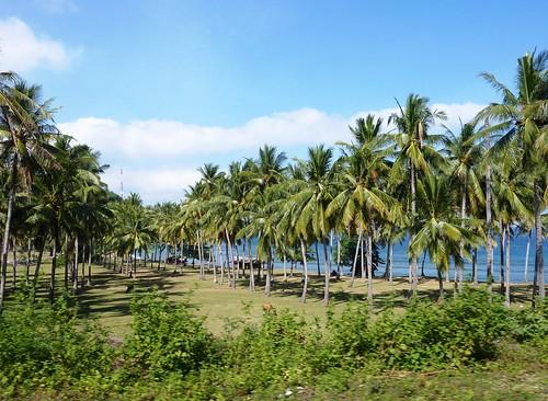 Lombok-Senggigi- Gili Trawangan (17)