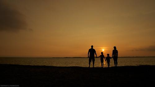 Family 351/365