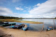 Barcos na Lagoa de bidos , bidos (CCDR - Centro / Regio Centro de Portugal) Tags: barcos bidos 101208 lagoadebidos patrimnionatural projectoimagensdocentro ic101208