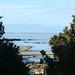 Caminhada de + 40km no Abel Tasman NP
