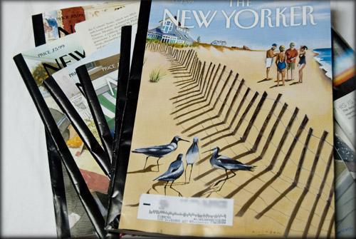 new-yorker-magazines