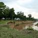 Crocodile Camp