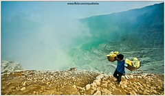 View From Top of Ijen (myudistira) Tags: morning bali lake work photographer acid culture crater gunung sulfur miner freelance adat budaya balinese fotografer tambang unik eastjava yudis ijen myudistira belerang gunungijen madeyudistira yudist