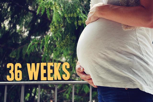 36weeks2