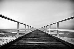 Convergence (Matthew Post) Tags: blackandwhite bw mono pier jetty australia queensland herveybay converginglines pialba