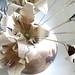 Zulu Lulu Jar with Origami Lilies