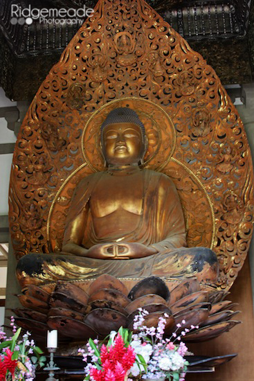 Byodo-In Temple 5