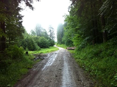 """Wanderung """"Wassertal Rundweg"""""""