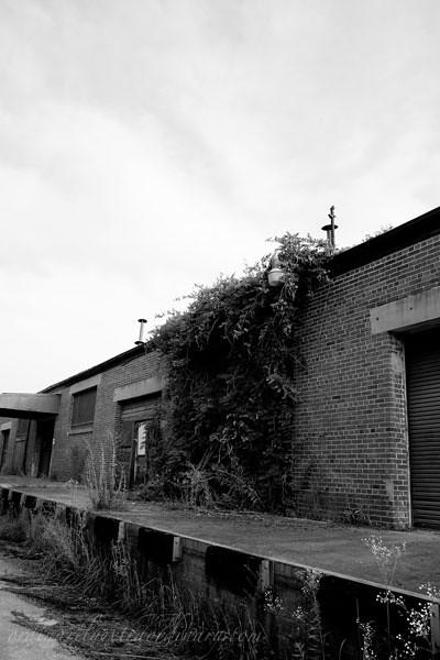 Fort-McClellan_070811_0008BW