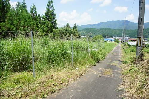 山への一本道