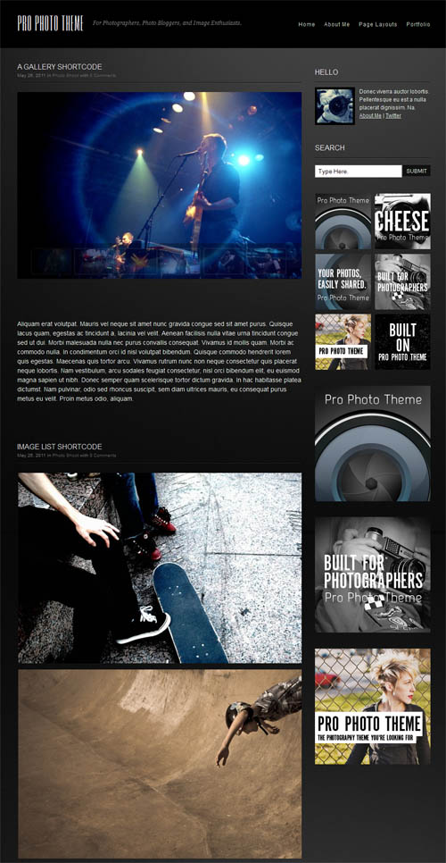 pro-photo-theme-1