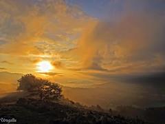 Amanecer en Cayn (Urugallu) Tags: espaa sol canon contraluz arbol spain flickr asturias colores powershot amanecer nubes rayosdesol g12 asturies infiesto tonos piloa cayn fuegoenelcielo principadodeasturias urugallu touraroundtheworld fleursetpaysages mygearandme llitedespaysages