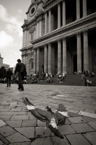 589/1000 - Outside St Pauls by Mark Carline