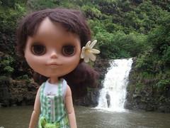 day 108:365 Waimea Falls