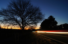 get home before dark (Seakayem) Tags: longexposure sunset silhouette sony canberra slt a55 ladydenmandrive