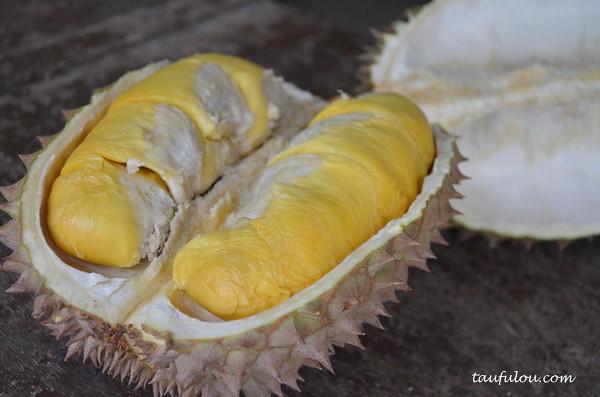 balik pulau durian (4)
