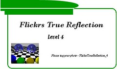 Flickrs True Reflection - Level 4