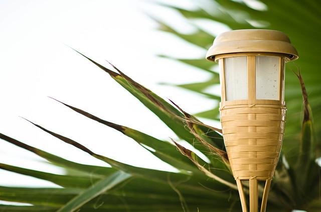 beach torch