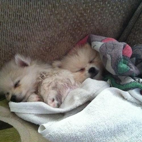 Cuddling after bathtime