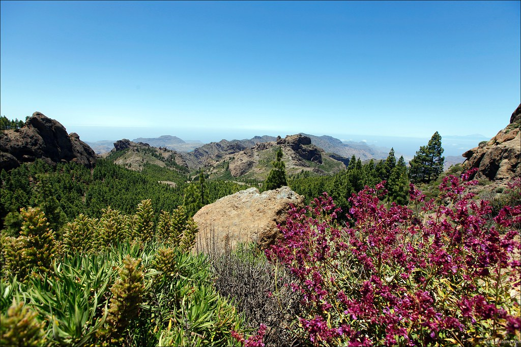 A place to love, Roque Nublo
