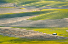 The palouse (protikH) Tags: green butte wave fields wa eastern palouse steptoe
