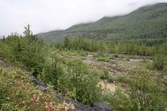 Toad River (TTVo) Tags: canada britishcolumbia alaskahighway toadriver summer2010 alaskawesterncanadajourney