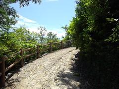 みなとの見える丘公園 #3