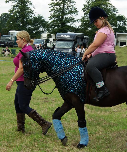 Glittery Pony Wrap