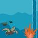 Aquarium - Turtles
