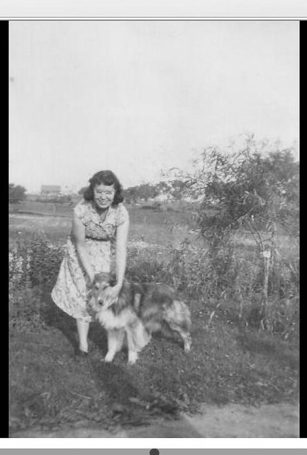 Mama on the farm with collie