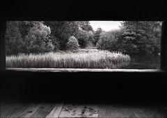 No. 9 (RoryO'Bryen) Tags: leica m7 iso400 trix no9 roryobryen film analog 35mm rangefinder leicam messsucher copyrightroryobryen 9adamsroad