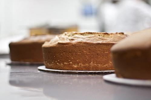Cake me.