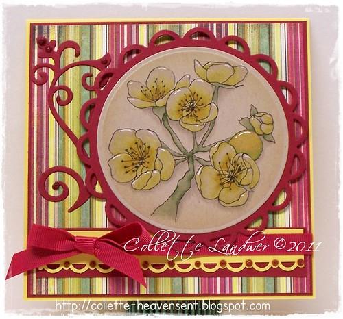 Pretty Pear Blossom