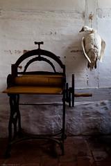 Svmmefugl uden vand (Jimmy Rehak) Tags: old furniture natur danish tradition danmark dinamarca dania lyngby gammel grnt sorgenfri frilandsmuseet  danske gammelt  grde dnische    danemark