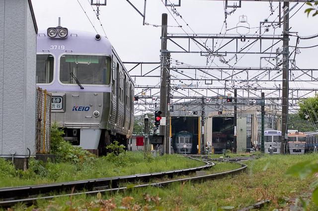 電鉄井の頭線3000系3019F クハ3719 ワイパー撤去